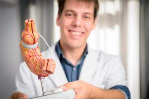 Dr. Yannick Nijs met anatomisch model van darmen